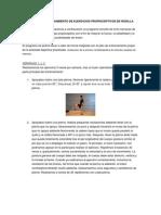 Programa de Entrenamiento de Ejercicios Propioceptivos de Rodilla