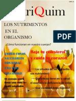 Revista de Nutricion