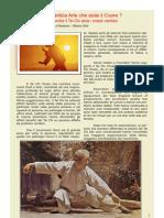 Tai Chi  SanBao Magazine 2007-05.pdf