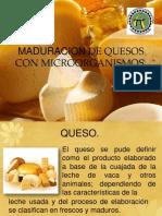 Maduracion de Quesos Con Microorganismos
