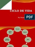 Ciclo de Vida.ppt
