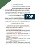 municipios saludables.doc