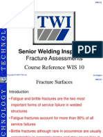 WIS10 Fracture Assessment Report