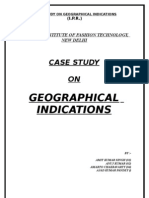 Case Study on Geographical Indiaction  By-Amit Singh
