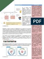 ARIT_6_págs 23-27- Vol 1_3er grado