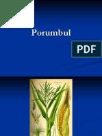 porumbulprezentareme-110309111246-phpapp02