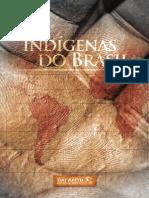 RelatorioAMTB DAI IndigenasDoBrasil