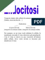 Endocitosi