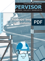 N° 37 Trabajo seguro en andamios [Enero - Febrero 2010]
