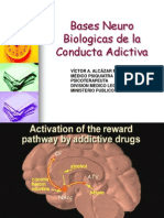 Adiccion y Lobulo Frontal - Dr. Victor Alcazar Mendoza