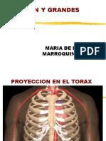 Anatomia Radiologica Corazon