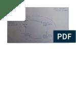 Mappa causale POLITICA del PUDE