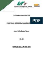 PRACTICA NEURONA.docx