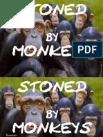 Stoned by Monkeys in Islam