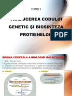 Nr.1 - Traducerea Codului Genetic Si Biosinteza Proteinelor