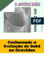 GRUPO GESTANTES_1_EVOLUÇÃO FETAL