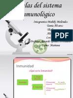 Celulas Del Sistema Inmune 1