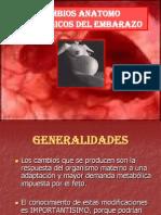Cambios Anatomo Fisiologicos Del Embarazo