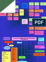 Mapas Conceptuales en Psicologia Social