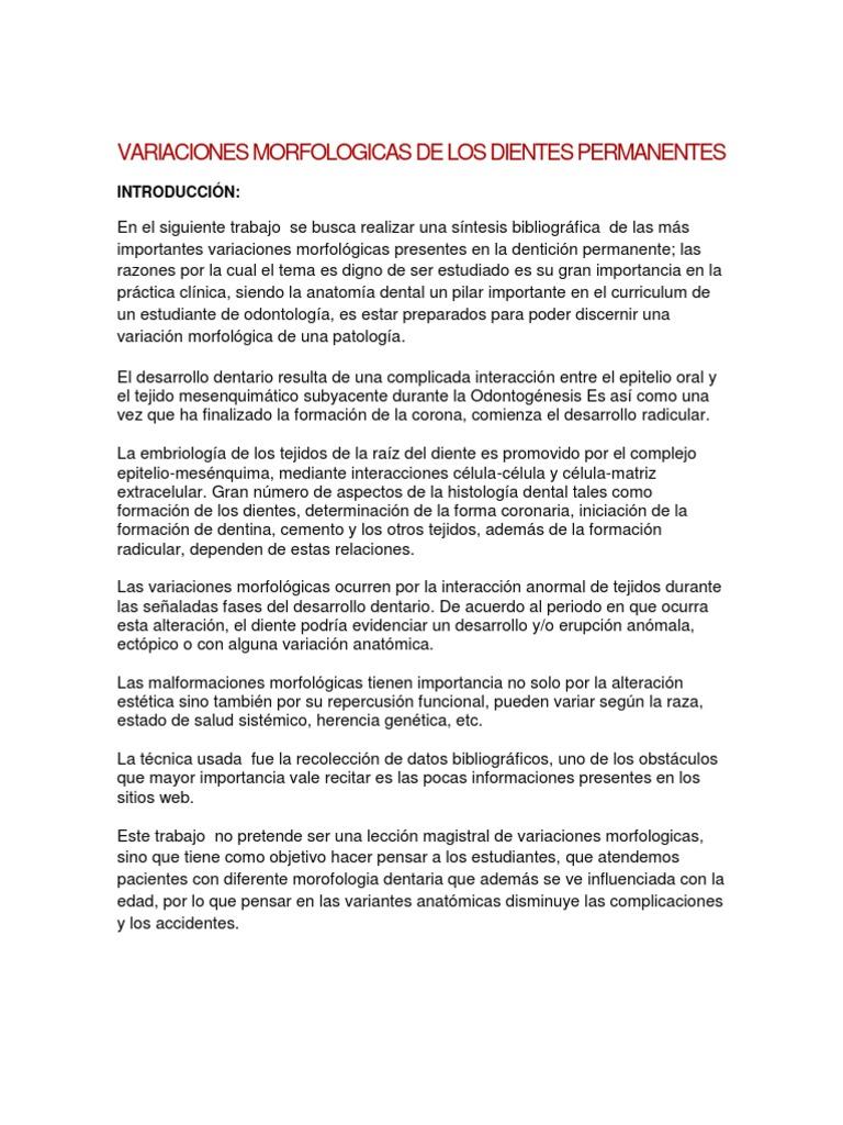 Excelente Histología Anatomía Oral Y Embriología Colección de ...