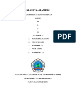 Klasifikasi Amfibi