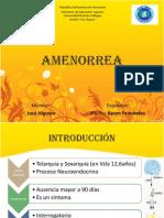 Amenorrea Por Karen Fernandez PDF