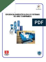 Auditoria aire comprimido.pdf