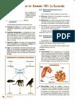 cencia 42b4.pdf