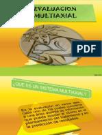 Diapositivas Vallo