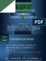 Crim i No Genesis