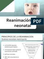 r Cp Neonatal