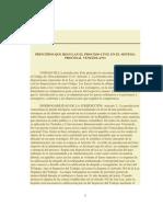 Principios Que Regulan El Proceso Civil en El Sistema Procesal Venezolano