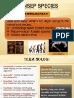 04 Konsep Species.edit Dian2013