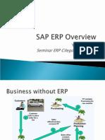 SAP ERP Overview