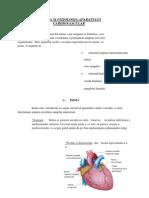 Anatomia Si Fiziologia