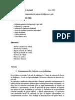 Práctico de Química 6to ing 1.doc
