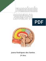 Sebenta Neuroanatomia Parte 1