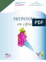 Niquinohomo INDICE