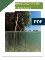 Manglares en PDF