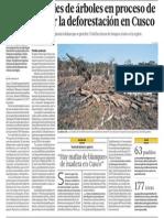 Bosques de Cusco Desaparecen