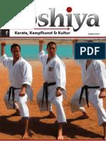2011_2.pdf