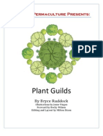 Plant Guilds  eBooklet - Midwest Permaculture