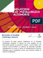 Induccion Altonorte 2013 Jorge Reyes