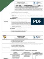 Planeacion Primer Periodo 10_ Mate. 2013