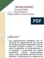 Sector Solidario