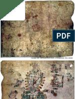 75513157-codex-egerton-resistance2010.pdf