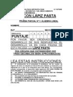 PRUEBA_PARCIAL_N_1_PAUTA.pdf