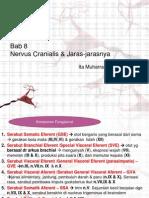 Nervus Cranialis&Jaras - Mba Ita.pptx