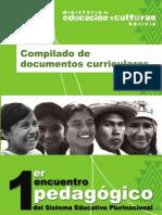 03 Compilado de Documentos Curriculares