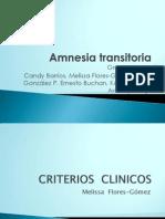 Amnesia Transitoria1